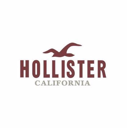صورة الشركة Hollister
